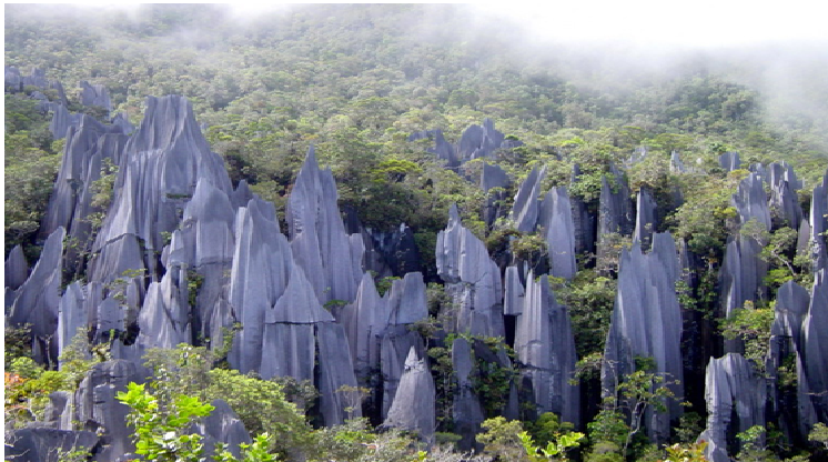 Gunung Mulu National Park, Sarawak