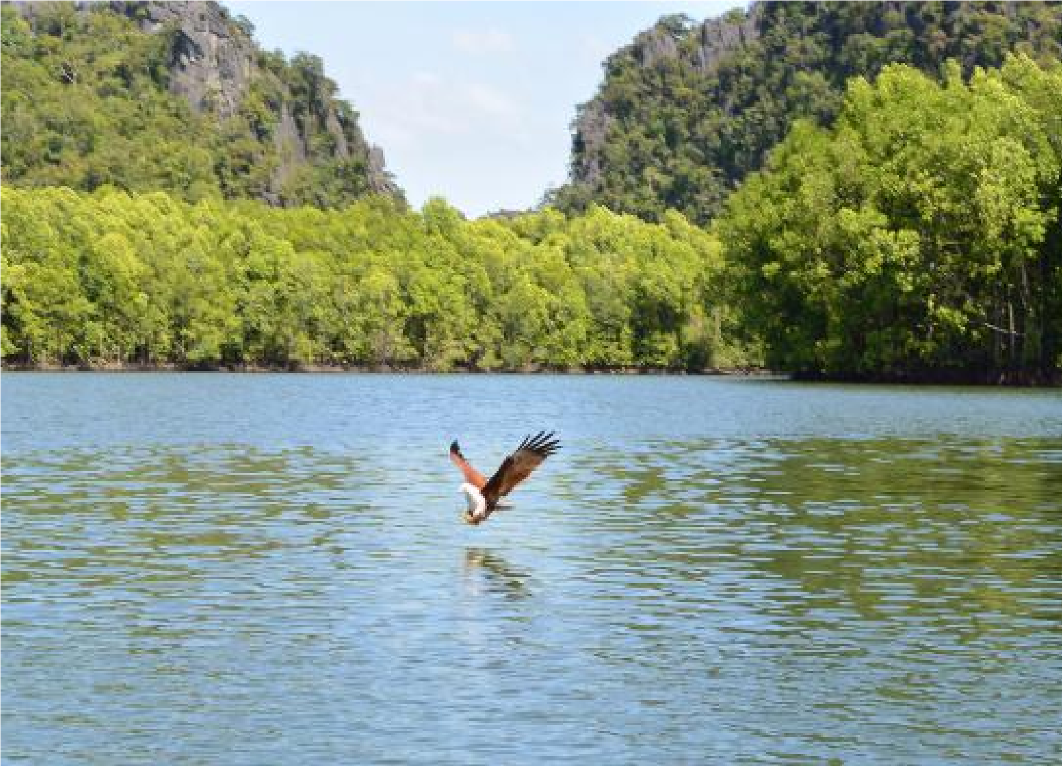 Top 4 Fascinating Places to Visit in Malaysia for the Travel Enthusiasts