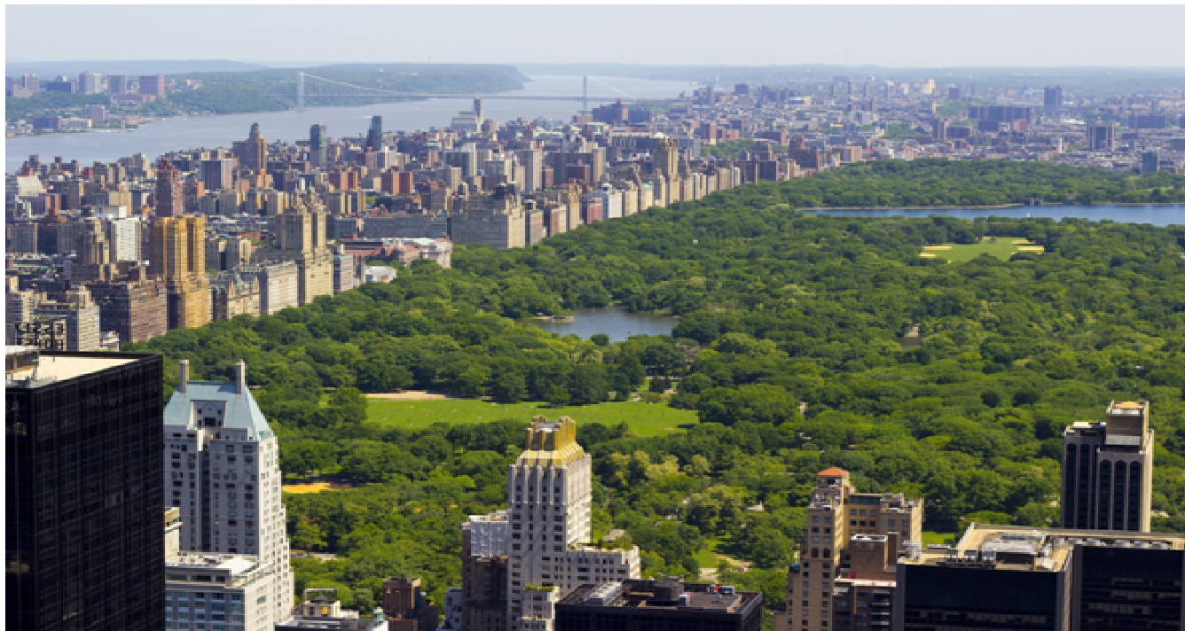 Top 6 Things You Didn't Know About Central Park