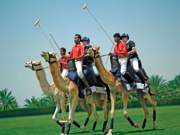 7 Crazy Things To Do In Dubai
