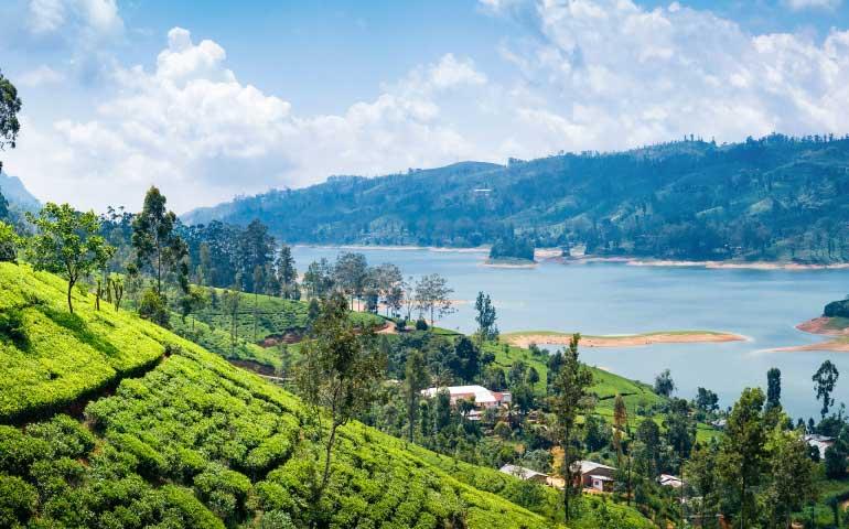 Sri Lanka Visa Guide for Indians