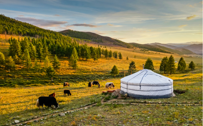 Traditional Mongolian 'Yurt'' / 'Ger' in Mongolian valley