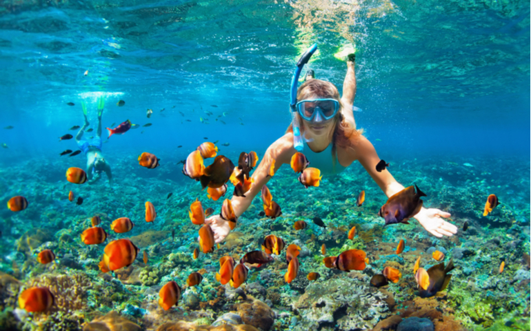 Couple snorkeling deep underwater with tropical fishes in coral reef sea, Maldives